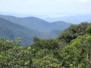 Ubatuba recebe o projeto 'A Mata Atlântica é Aqui'
