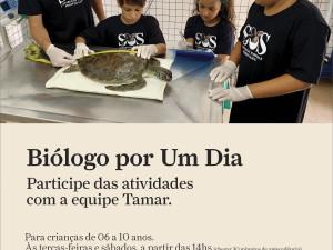 Crianças podem ser biólogos por um dia no Projeto Tamar